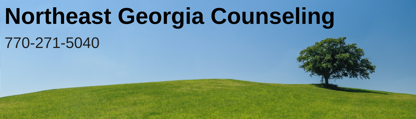 Northeast Georgia Counseling
